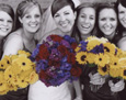 Her attendants carried yellow! They included sunflowers, gerbera, roses, and yarrow. The maid-of-honor had touches of purple statice added to her bouquet.